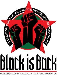 Black Is Back Rally Nov 7 in DC